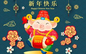 Chinese New Year Pig 2019