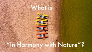 Harmony with nature Fengshui principle